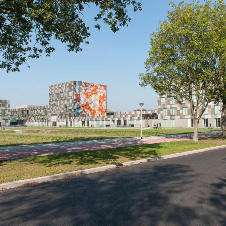 onderwijspark baken van Ezinge driessenenvandeijne.design